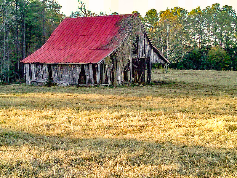 Red Barn Vance County, NC Barn has fallen