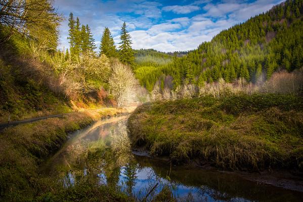 Oregon Morning
