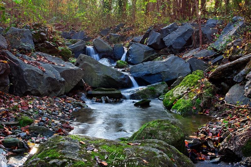 Wissahickon Water Stream