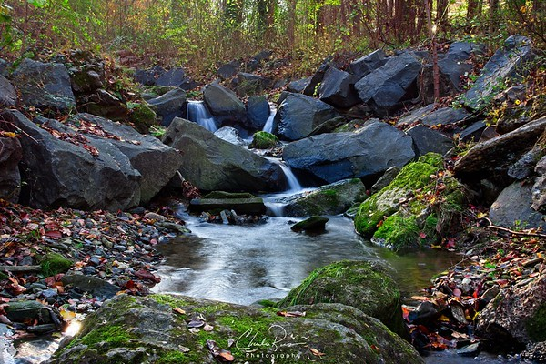 Wissahickon Water Stream
