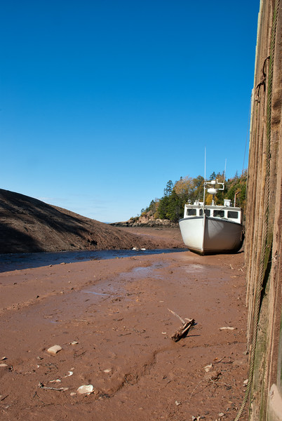 Fishing Boat High and Dry at Low Tide - Shulie, Nova Scotia