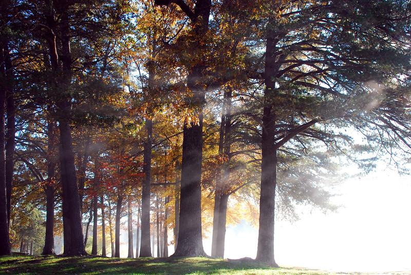 Foggy Morning at Fall Creek Falls State Park, TN