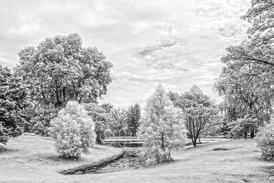 Springgrove_Infrared_0109-HDR