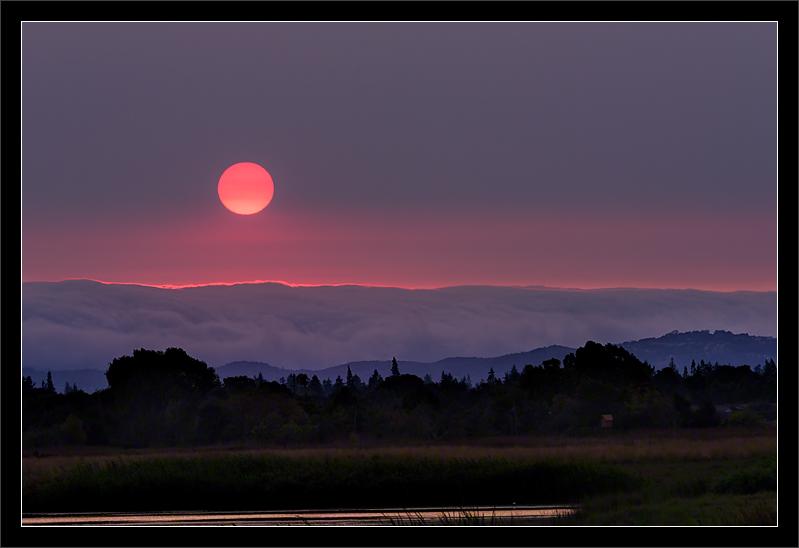 Pink & Purple Haze Sunset