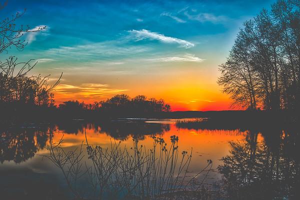 -Nature & Wildlife Photography-
