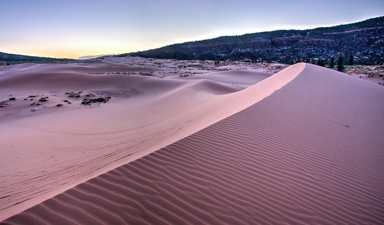 PInk Sand Dunes State Park, Utah