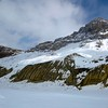 Columbia Icefield in early Summer