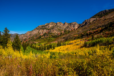 Mineral Basin Fall Colors