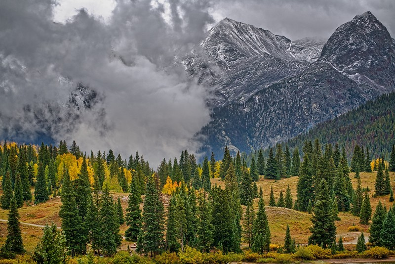 Autumn Near Molas Lake