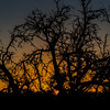 Hill Country Sunset