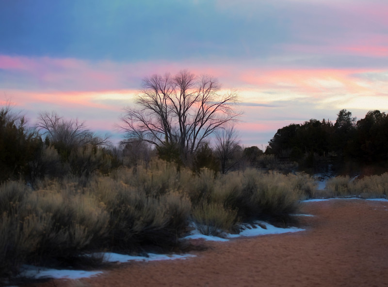 Evening On the Arroyo