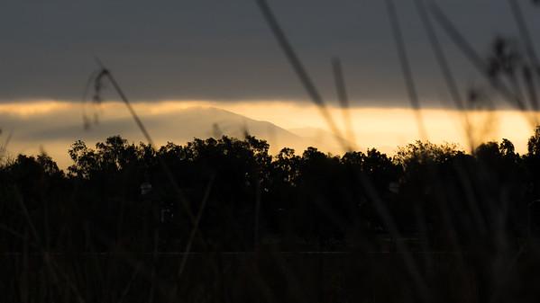 Sunrise in the Preserve