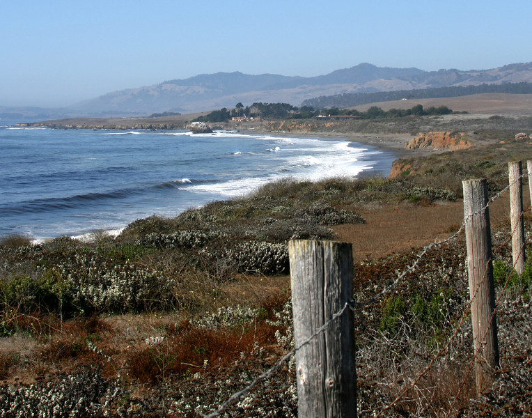 San Simeon Shoreline  California