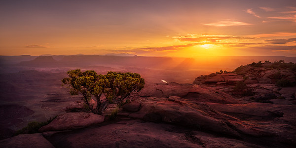 First Light Over the Canyonlands