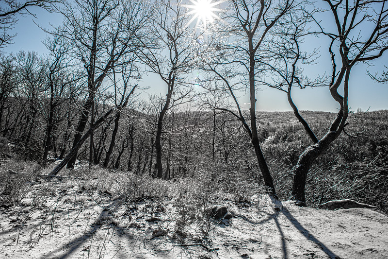 Ice On The Mt.