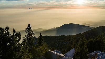 Dissolving Fog