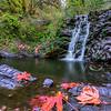 Autumn at Marie canyon