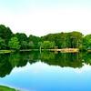 Huddleston Pond