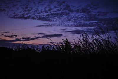 Virginal - Sunset under high voltage