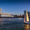 Sailing - The San Francisco Bay