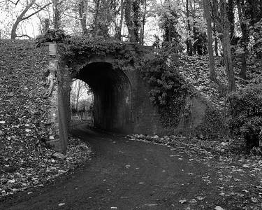 Autumn Bridge near Northcroft - Lambourn Valley Way