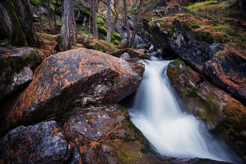 Tramouillon's stream