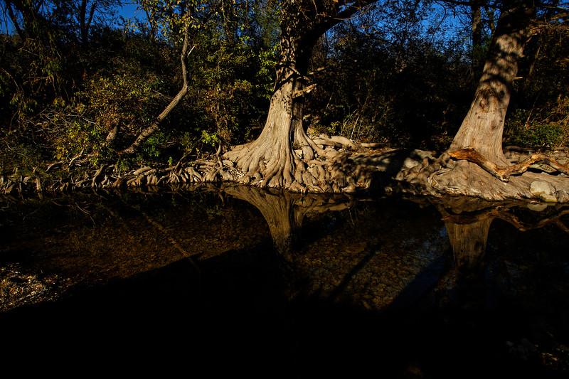 La. Williamson Creek 17
