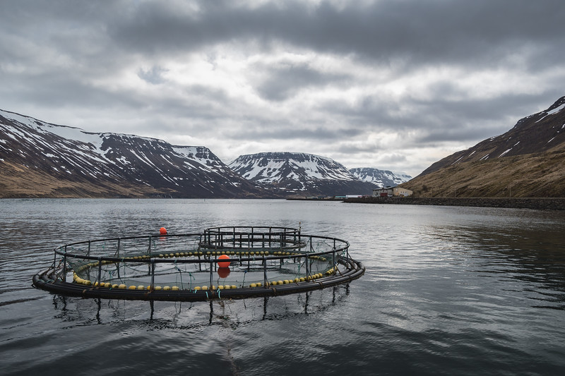 Dramatic clouds over Sudureyri fish farm in Sugandafjordur Westfjords Iceland