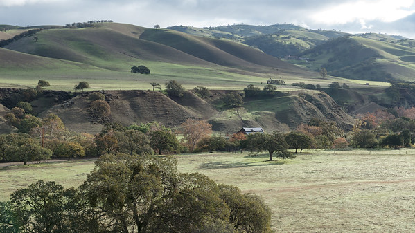 Livermore Valley, near Del Valle