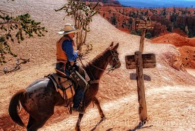 Bryce Cowboy