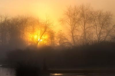Cowichan River Sunrise