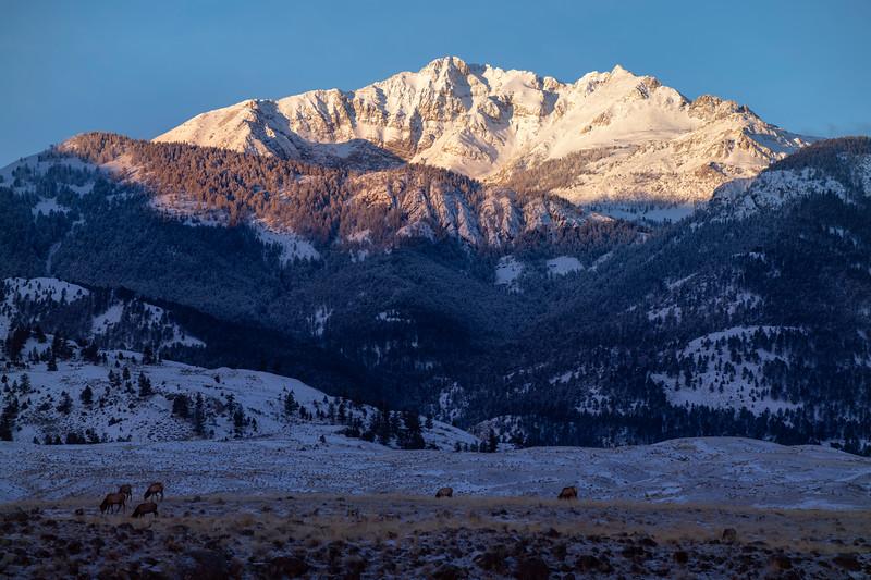 Sunrise on Electric Peak