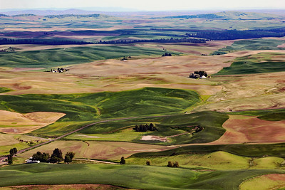 Palouse Farmland