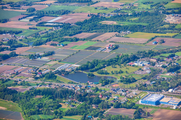Summer Landscape, Hokkaido