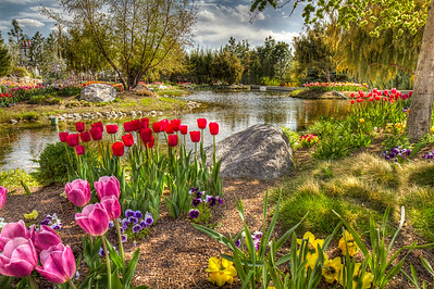 Annual Tulip Festival at the Gardens at Thanksgiving Point