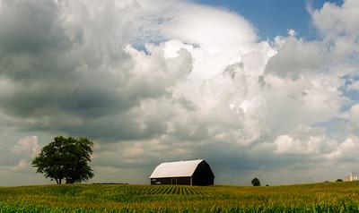 Stormy Barn in Farm Corn field