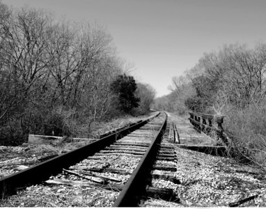 Train Tracks in B/W