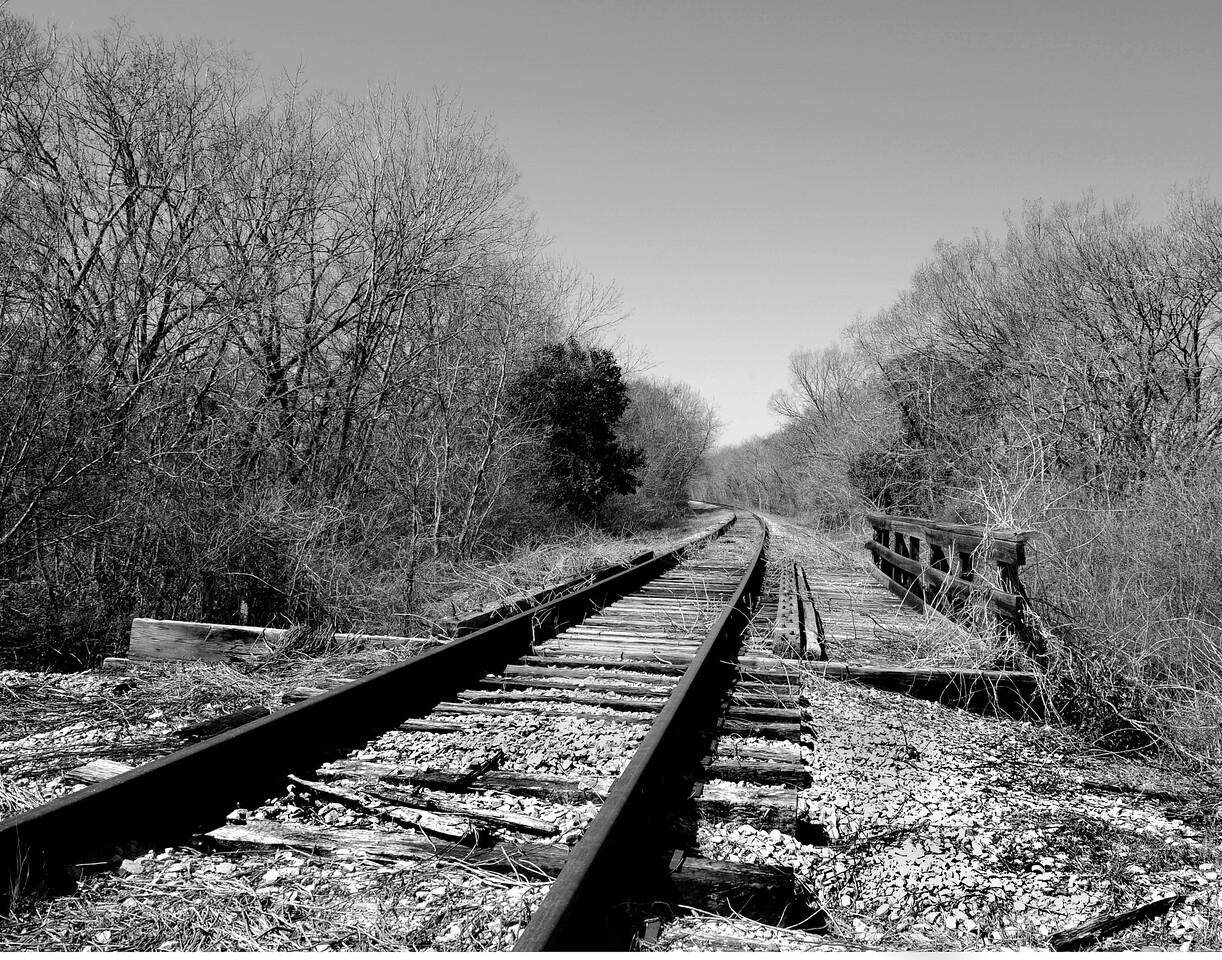 Train Tracks in B/W