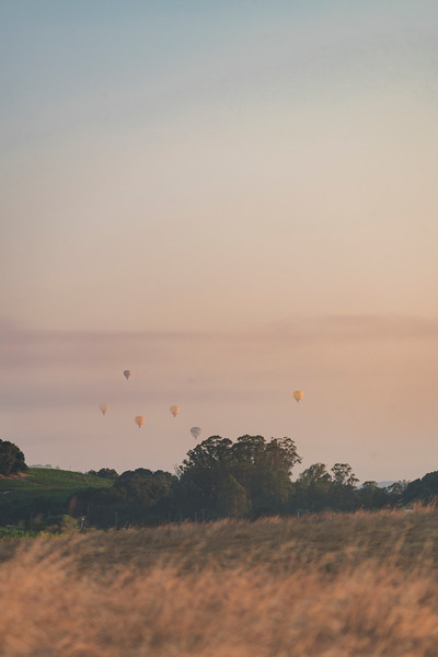 Ballooning Over Wine Country - Napa, California