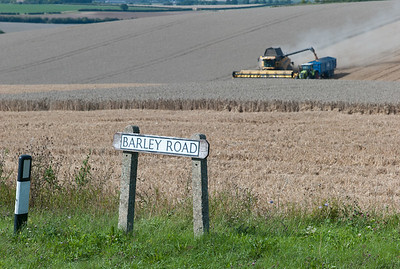 """Harvesting wheat on Barley Road"""