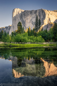 Morning Reflections in Yosemite