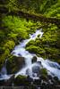 Gorge Stream