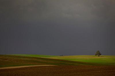 landscape, western negev