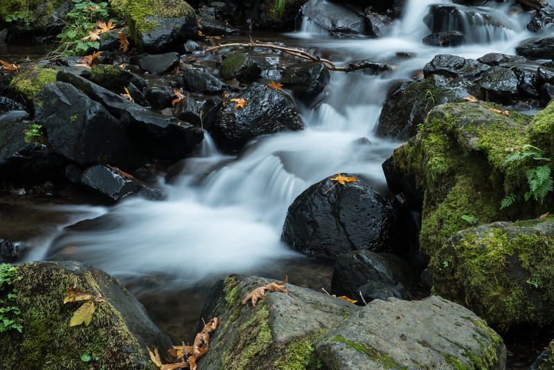Stream in Columbia River Gorge
