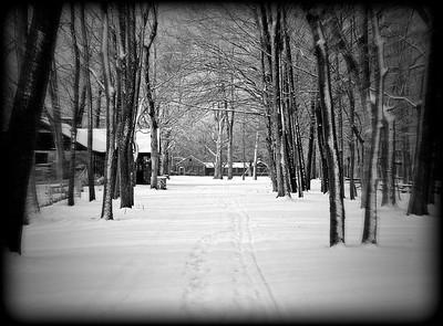 Hamlin Park in the Winter