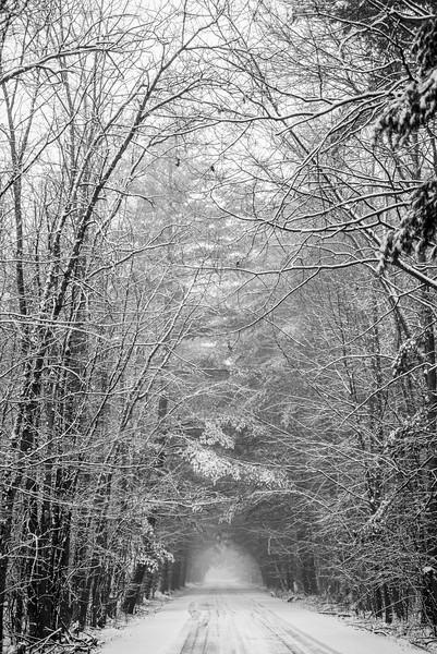 Winter 0217