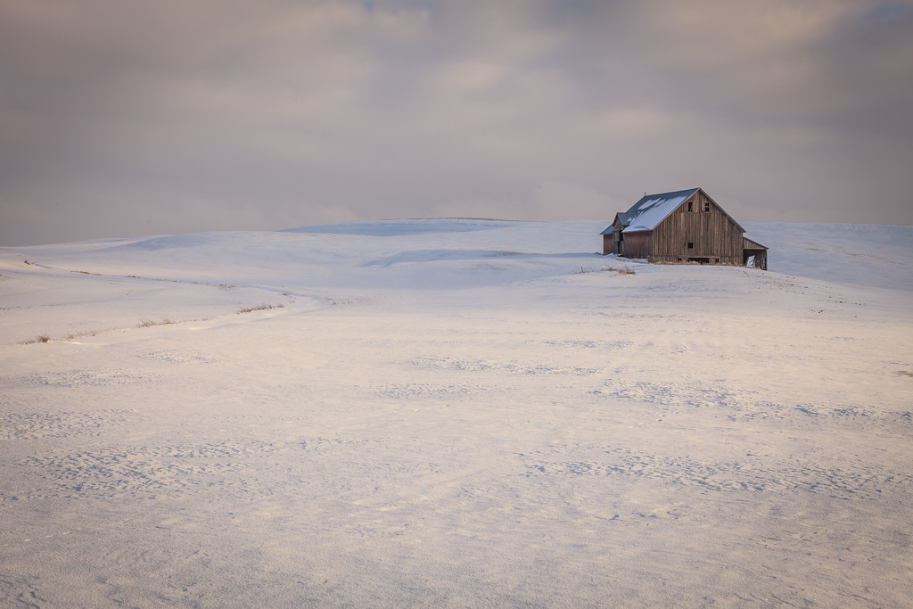 Old barn out on the Palouse
