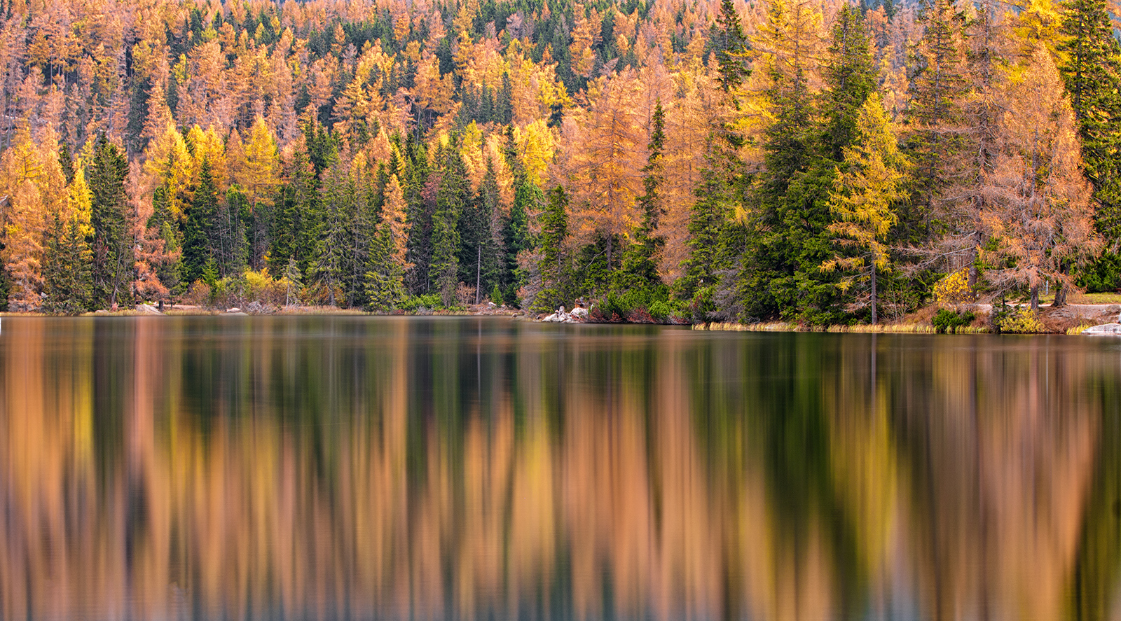 strbske pleso, slovakia, lake, water, autumn, threes, reflection