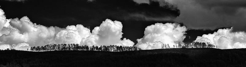 Clouds and Aspens