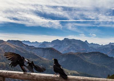 Auf dem Jenner / Berchtesgaden